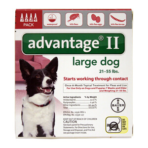 Advantage II Dog (21-55) 4 month (Red)