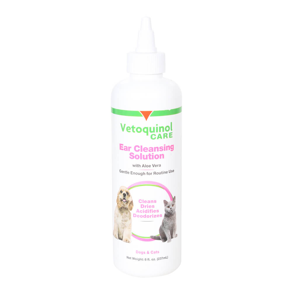 Is Aloe Vera Good For Dogs Ears