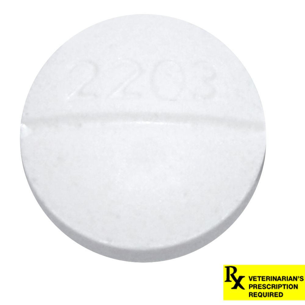 Metoclopramide 10mg Tablets Milk Production