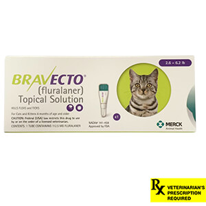 Rx Bravecto Topical Solutions For Cats
