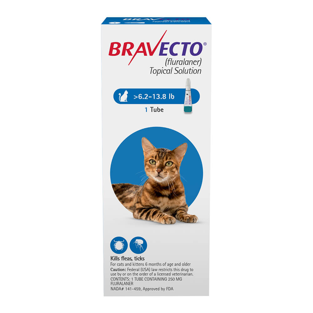Rx Bravecto Topical Solution For Medium Cats 6 2 13 8 Lbs