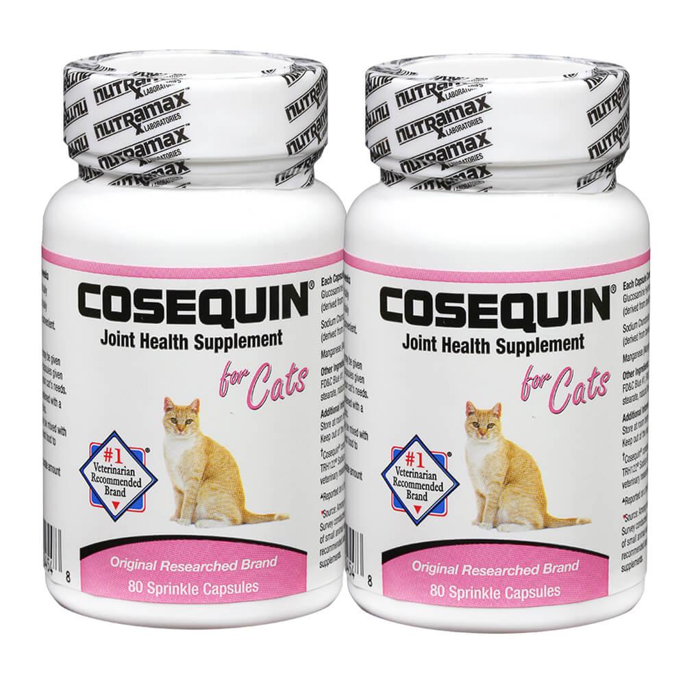 cosequin for cats cat joint health lambert vet supply. Black Bedroom Furniture Sets. Home Design Ideas