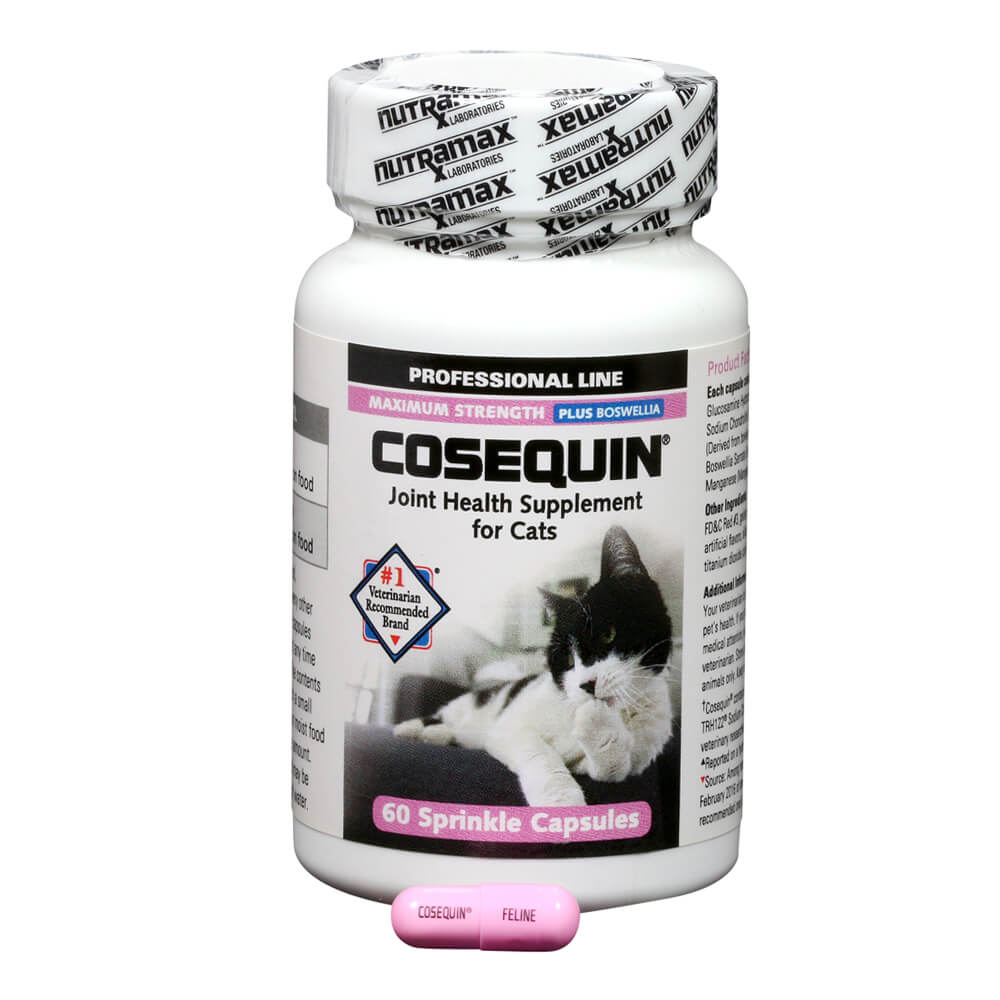 cosequin for cats 60 count capsule professional. Black Bedroom Furniture Sets. Home Design Ideas