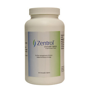 Zentrol Chewable Tablets 60 ct