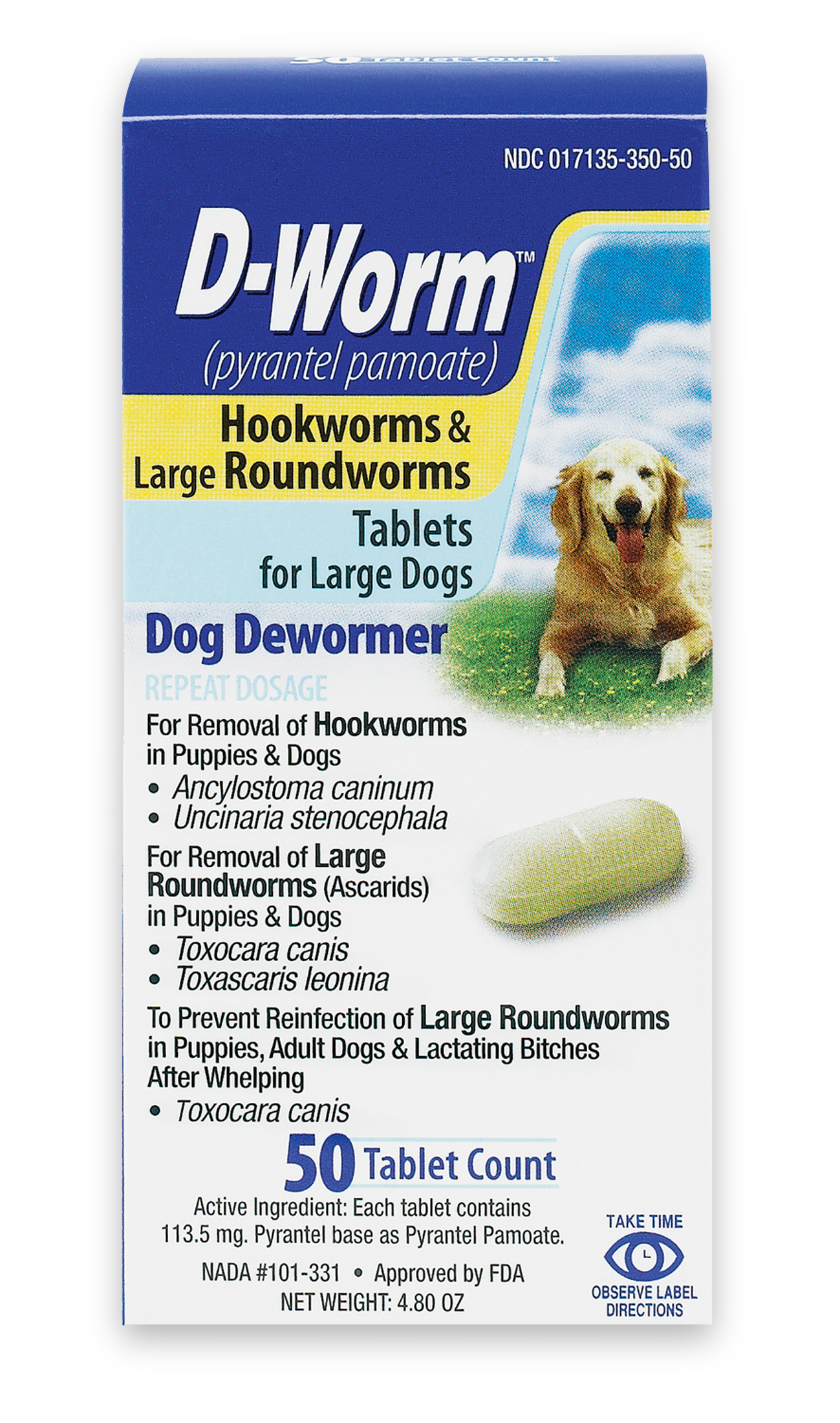 Hookworm in dogs