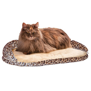 Kitty Sill Deluxe with Bolster, Leopard
