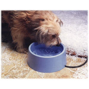 API Heated Pet Bowls