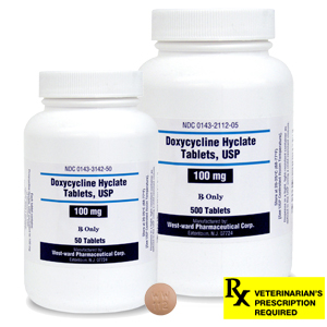 Doxycycline Rx Tablets