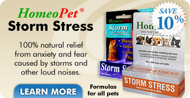 HomeoPet Storm Stress - 100% natural anxiety relief for cats and dogs.