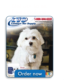 Order your free catalog now!