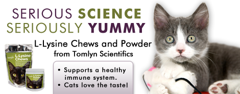 L-Lysine for Cats and Kittens - online exclusively at LambertVetSupply.com