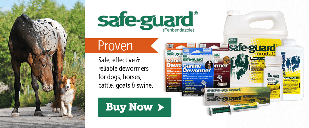 Safe-Guard dewormers for dogs, cats, horses, goats & swine