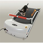 GoPet Treadmill for Dogs