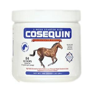 cosequin equine powder horse cartilage lambert vet supply. Black Bedroom Furniture Sets. Home Design Ideas