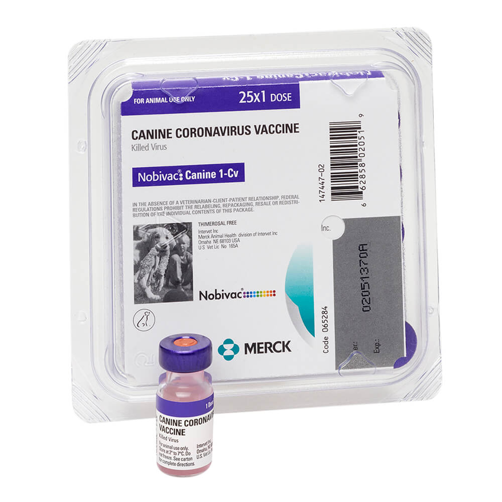 coronavirus canine vaccine