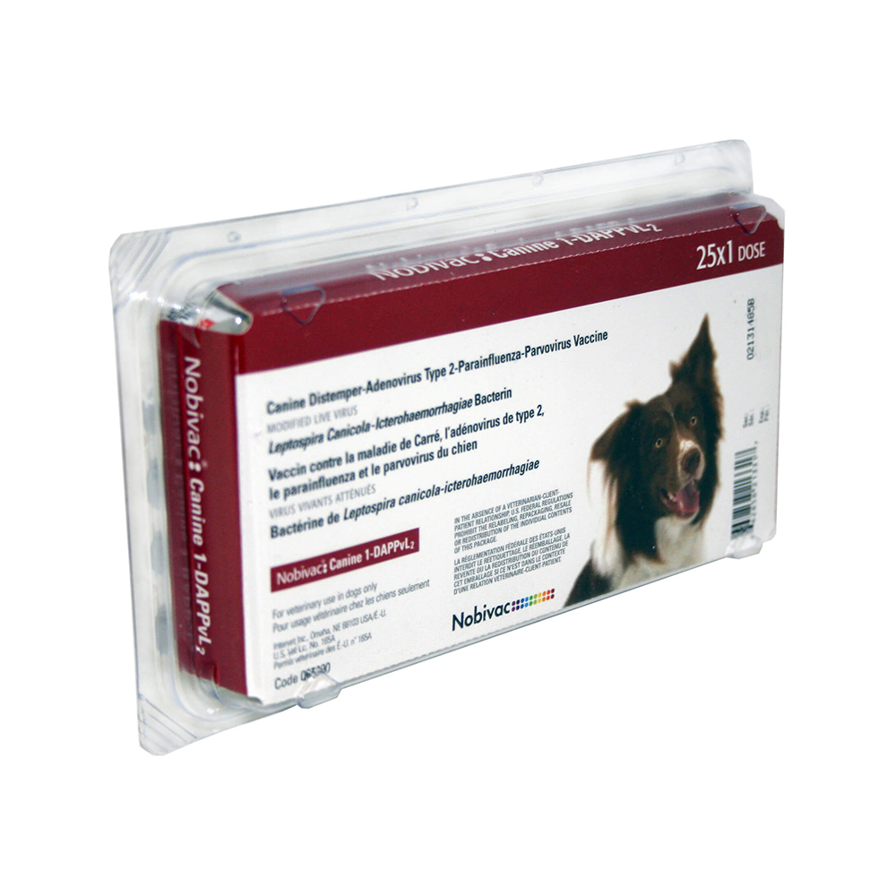 Nobivak for dogs. Recommendations for vaccination of dogs 72