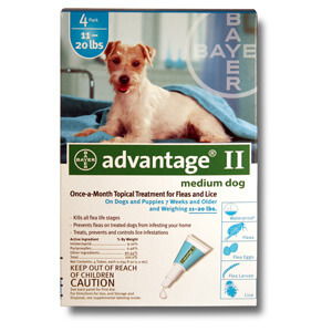 Advantage II for Dogs 11-20 lbs, 4 Month (Teal)