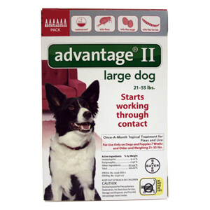 Advantage II 6 Month Flea Control for Dogs 21-55 Pounds, Red Label
