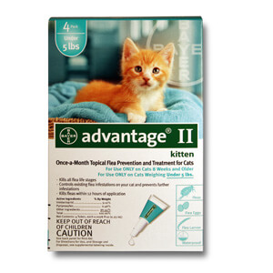 Advantage II  Kittens Under 5 lbs, 4 Pack Turquoise