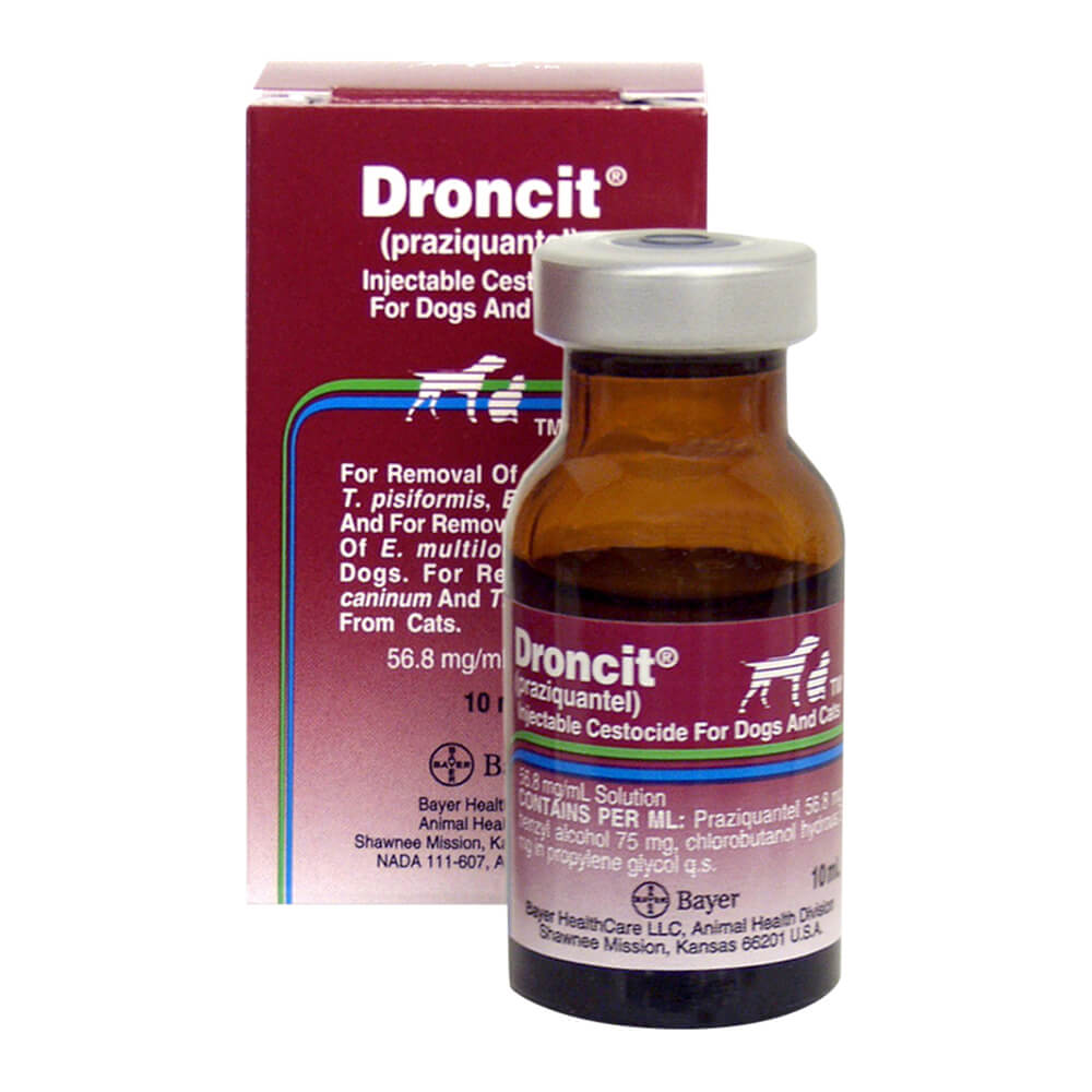 Droncit Injectable Remove Tapeworms In Dogs Lambert Vet