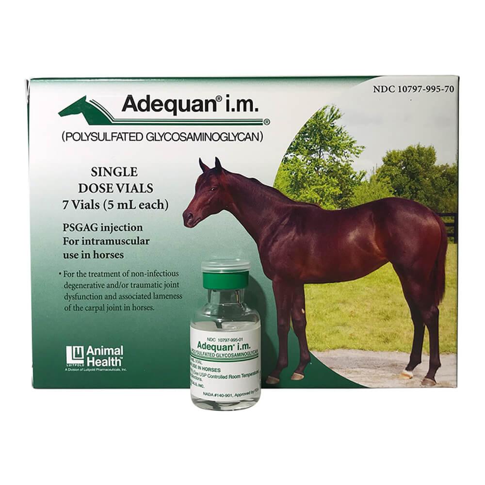 Equine Joint Supplements   Horse Supplies   Lambert Vet Supply