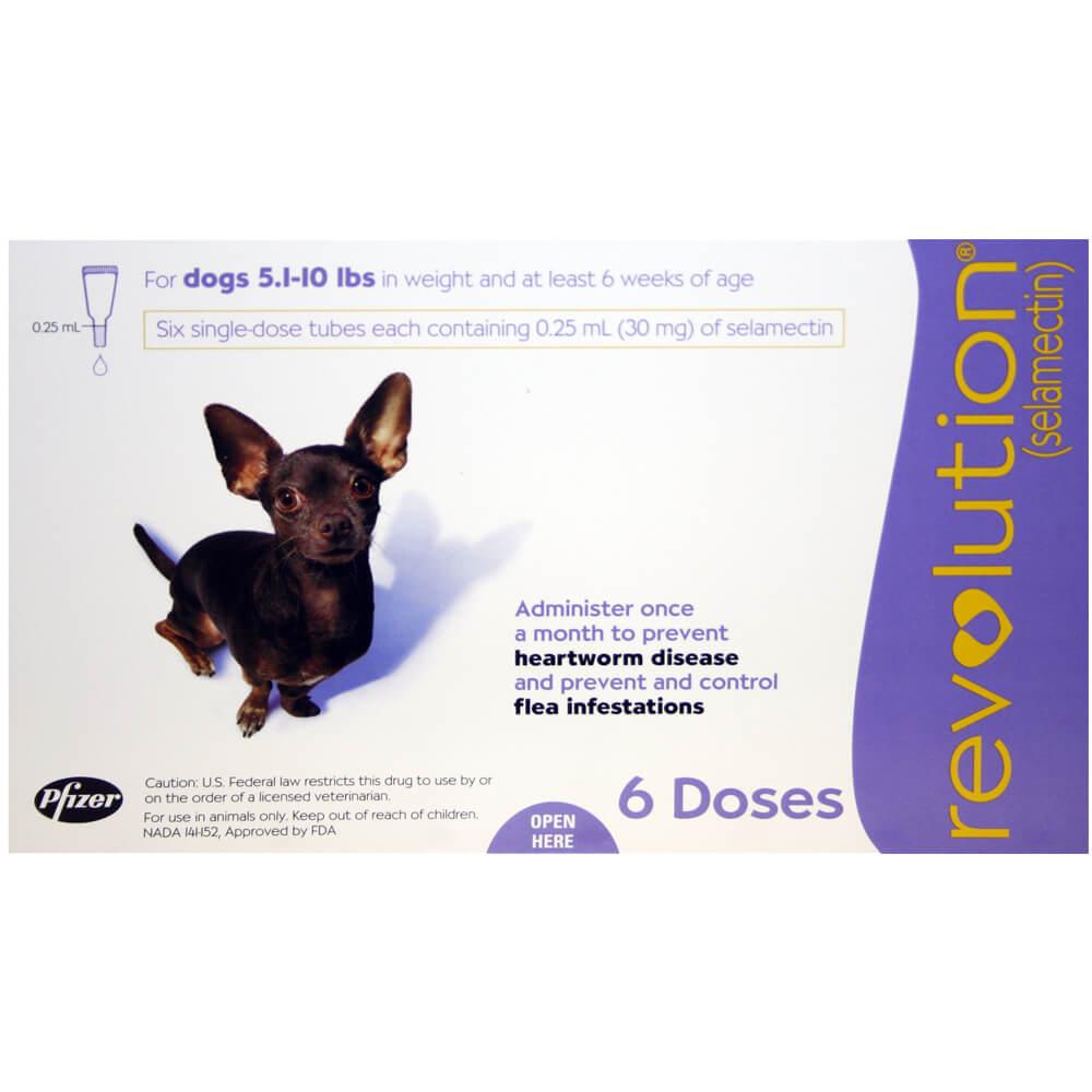 Revolution For Dogs Flea Control