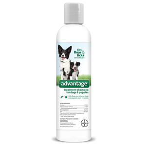 Advantage Treatment Shampoo for Dogs and Puppies