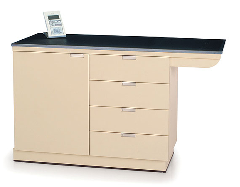 PetLift Weigh and Exam Table Flush Stainless Steel top