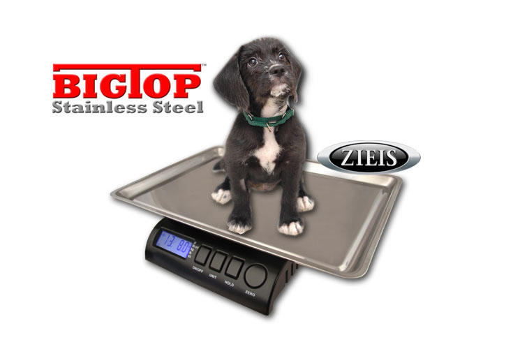 Vet Pet Scale with Big Top Stainless Steel Top 15 lb Capacity