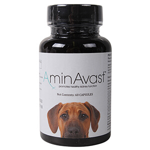 AminAvast for Dogs