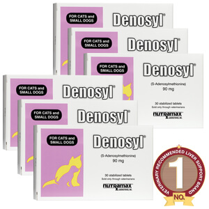Denosyl Tablets, 30 count,  6 Pack