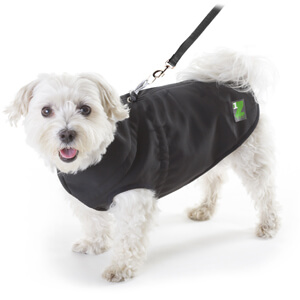 1Z Dog Coat, Size 10