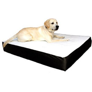 Orthopedic Double Pet Bed