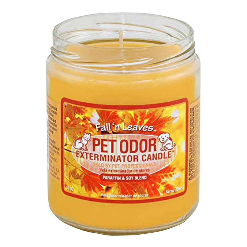 Pet Odor Exterminator Candle, Fall Leaves