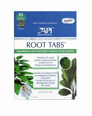Root Tabs - 10 Count