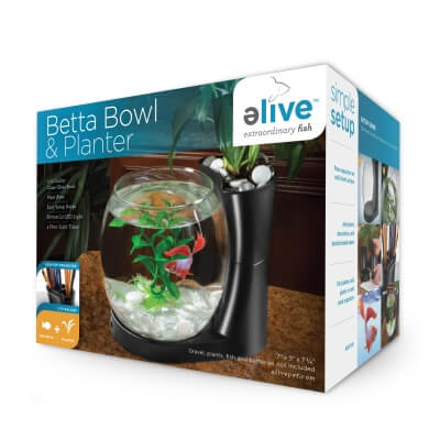 Betta Bowl And Planter Black