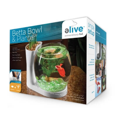 Betta Bowl And Planter White