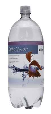 Betta Pre-Conditioned Water .5gal