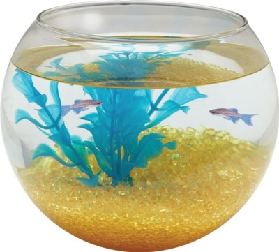 Glass Bowl Sphere 1 gallon