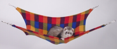 Ferret Leisure Lounge Fleece