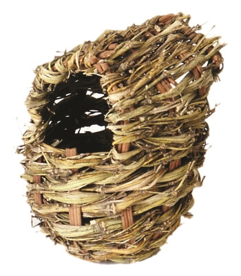 Finch Twig Covered Nest