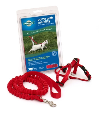 Come With Me Kitty Harness and Bungee Leash, Small, Red