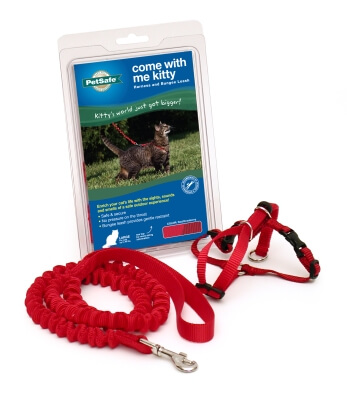 Kitty Harness & Bungee Lead Red - Large