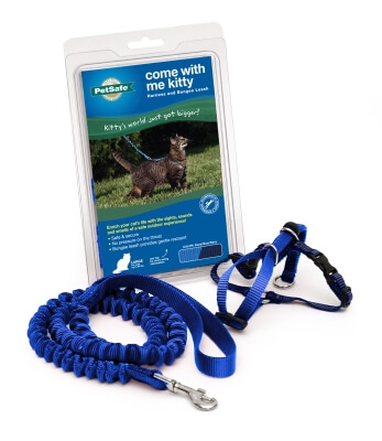 Come With Me Kitty Harness and Bungee Leash, Large, Blue
