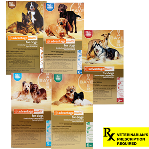 Advantage Multi Rx for Dogs