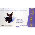 Revolution Topical, Dogs 5.1-10 lbs, 6 Doses, Rx