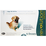 Revolution Rx for Dogs, ORM-D, 40.1-85 lbs, 6 Month (Teal)
