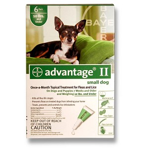 Advantage II for Dogs 0-10 lbs, 6 Month (Green)