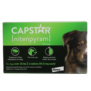 Capstar for Dogs Over 25 lbs, 6 count