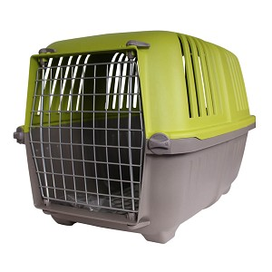 "Spree Pet Carrier for Small Dogs and Cats, 22"", Green"